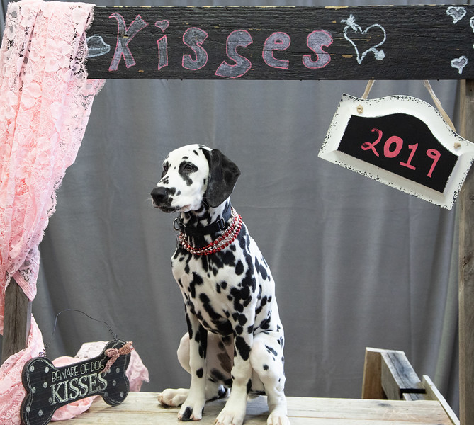 GDU Kissing Booth 2019-20.jpg