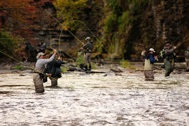 Salmon River 151.jpg
