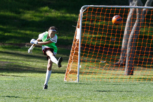 State Cup 2013