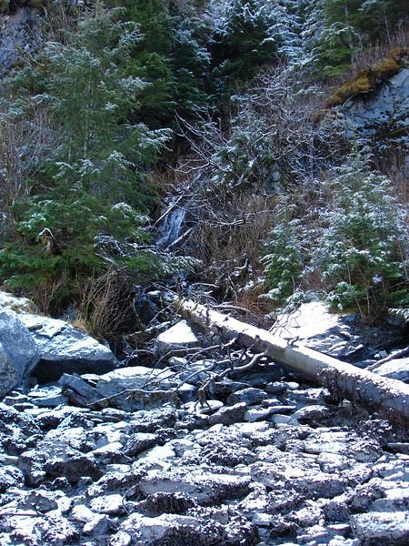Alaska 2008 162.jpg