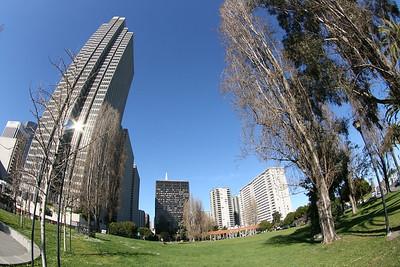 This City Life (SF)