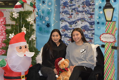 2018 Christmas in Library