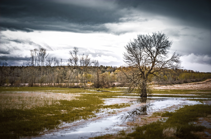 2019_0514_06756016 x 4000-HDR_Landscape_0514_19.jpg