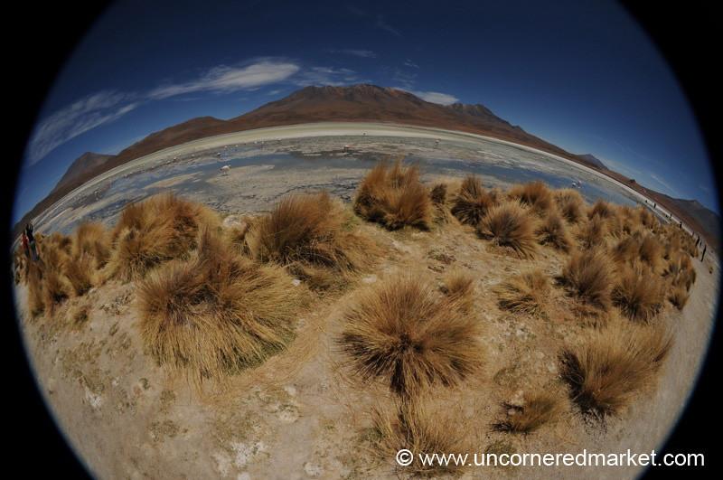 Laguna Hedionda Fisheye - Salar Tour, Bolivia