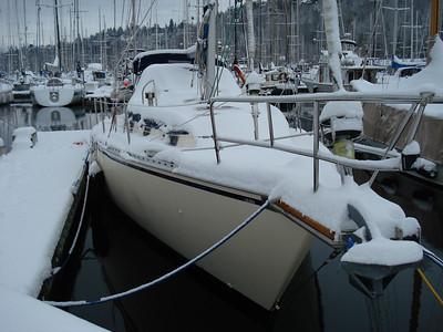 2008.12.20 Winter wonderland