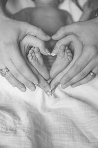 Elianna Gray Newborns
