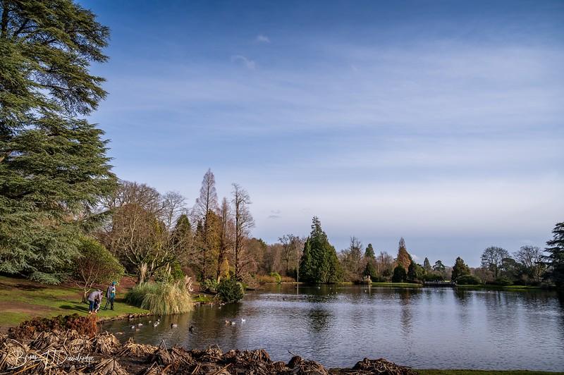 Sheffield Park-0197.jpg