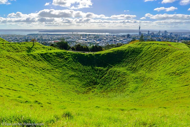 05.10_Auckland-3219.jpg