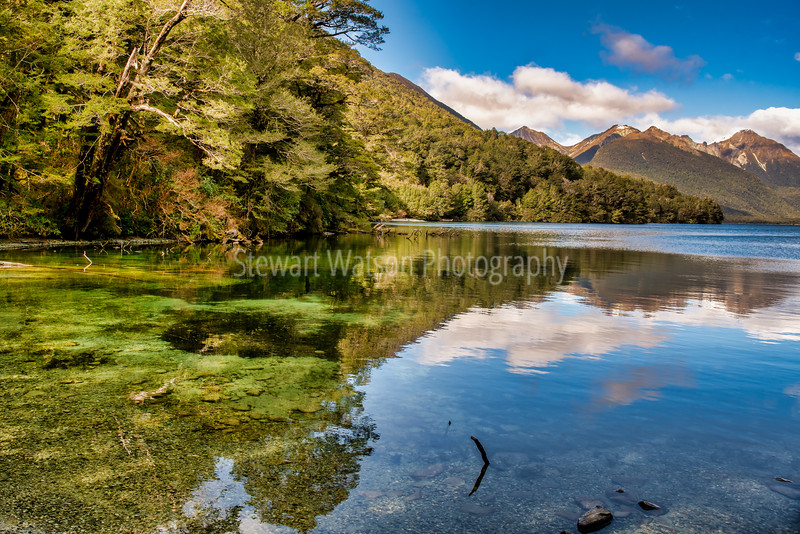 Beautiful sharp reflections on the crystal clear water of Lake Gunn Fiordland New Zealand