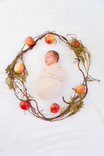 Newborn Photography Fremont CA (6).jpg