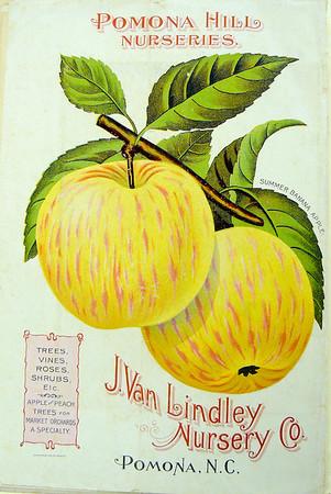 JVL - 1908 Catalog
