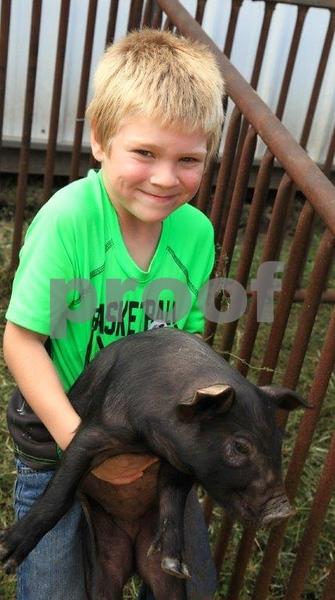 Boy & pig 5316c.jpg