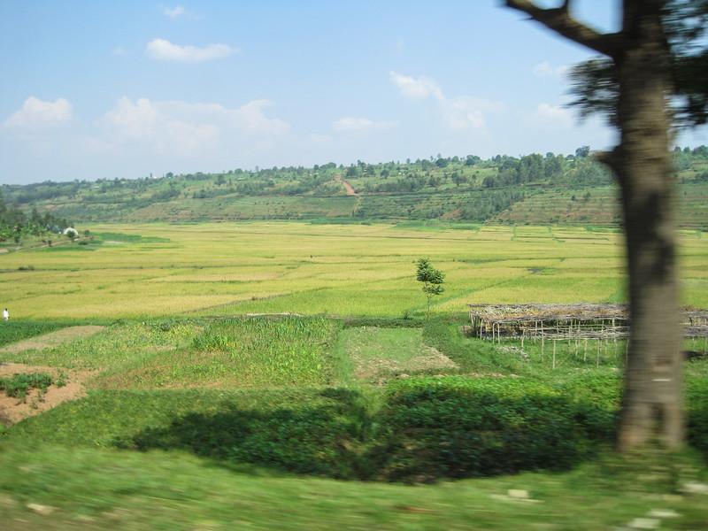 Rwanda_17_ixus-9347.jpg