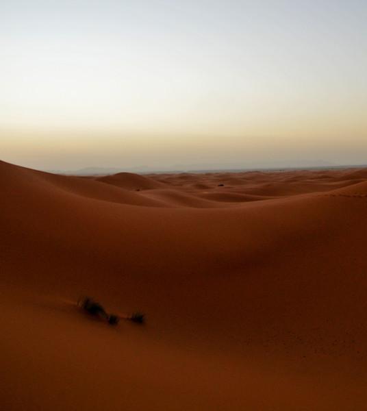 day4-SaharaCamp-15.jpg