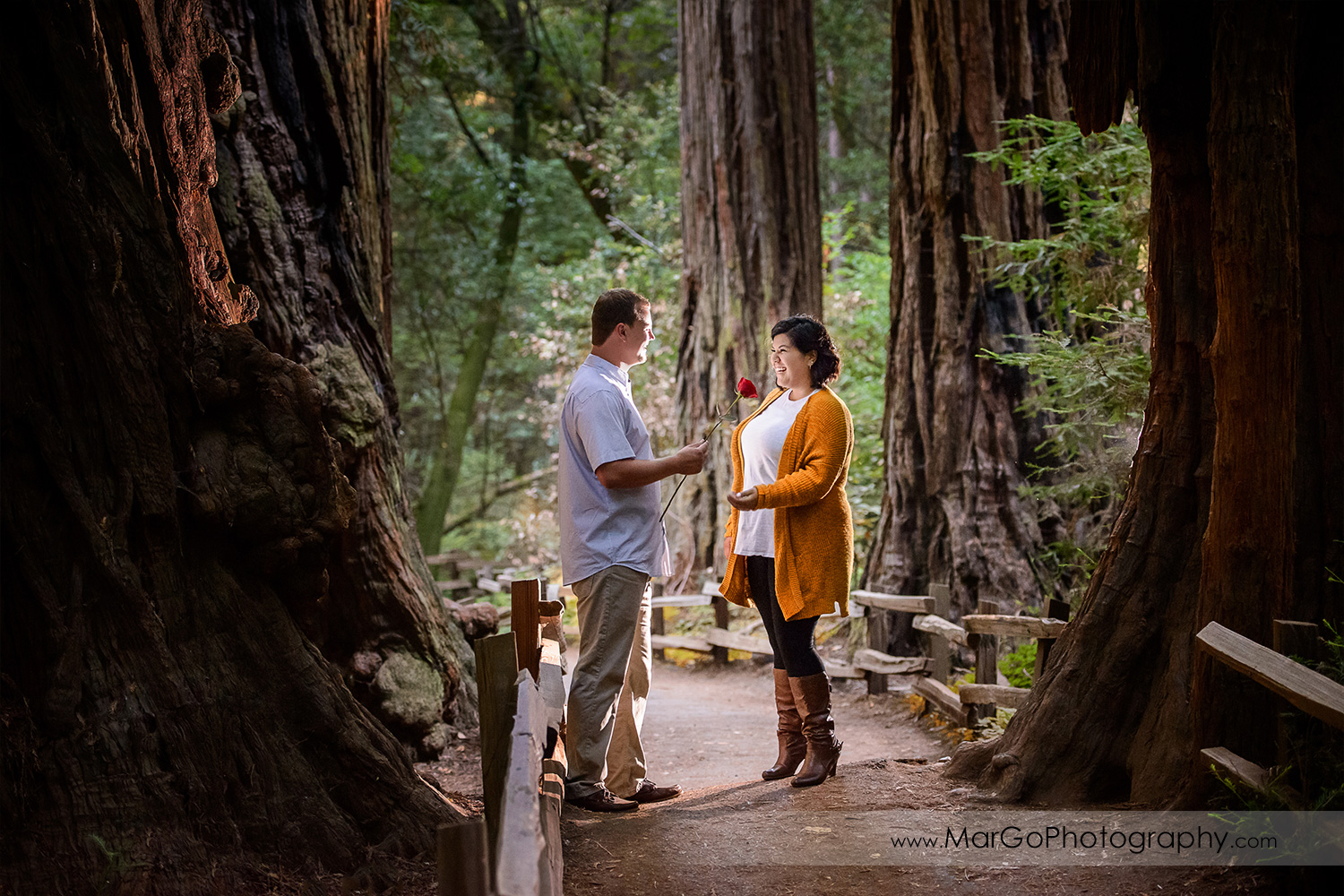engagement at Muir Woods National Monument