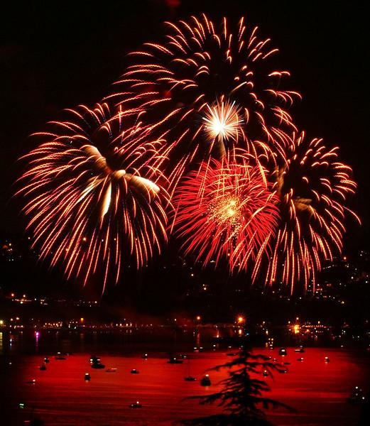 fourth fireworks 2009_44C.JPG