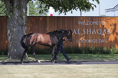 Al Shaqab Lockinge Day