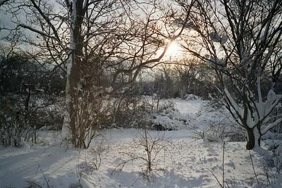 January  Storm, East Hampton
