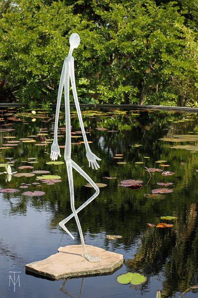 naples_botanical_190131_0027-LR.jpg