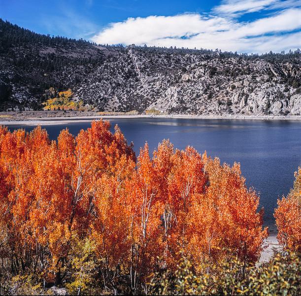 Grant Lake.jpg