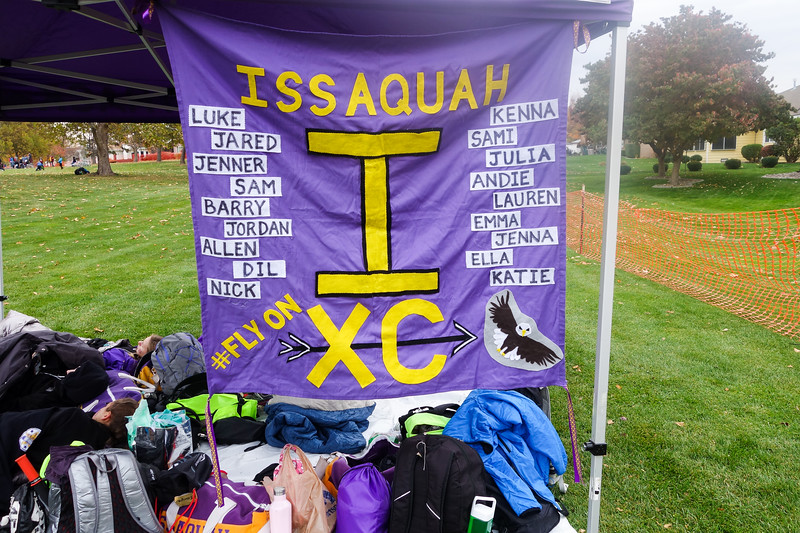 005 - 2017 11 04 - State XC Championships SM.jpg