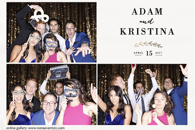 Kristina and Adam {photo strips}