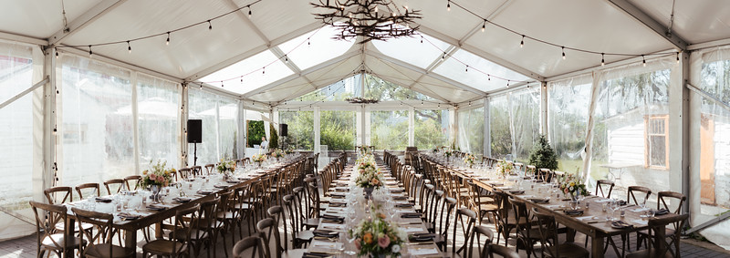 leila_and_curtis_wedding514.JPG