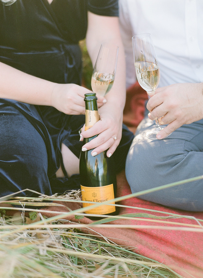 The champagne at their field engagement session in Virginia.