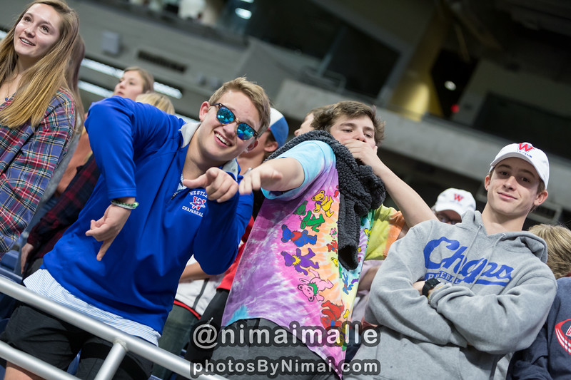 2933-WHS_Fans_Playoff_9-12-2017.jpg
