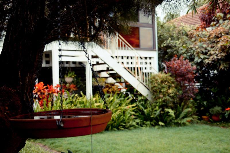 garden (161).jpg