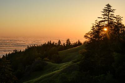 Sonoma Coast