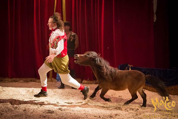 Pony Comedy