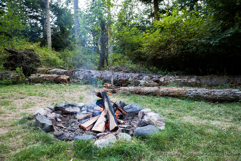 Woodget-140817-160--campfire, forest, timber, woods.jpg