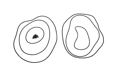 MASSEY FERGUSON 2600 2700 3600 SERIES GAMMA TRANSMISSION SEAL KIT