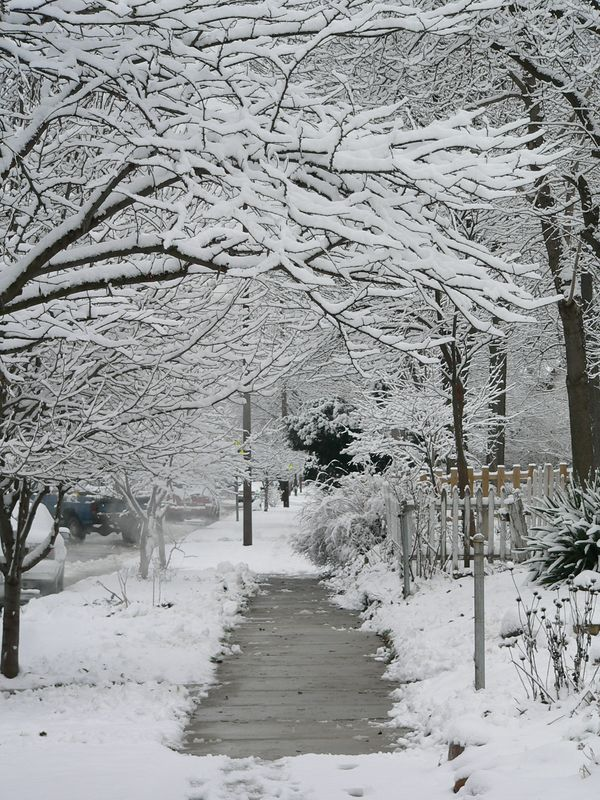 January 9 004.jpg