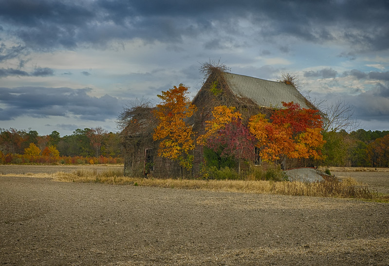 Old Barn with Fall Colors.jpg
