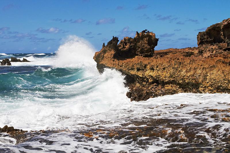 Hawaii939.jpg