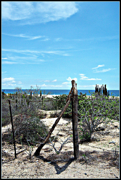 Desert to the Sea 