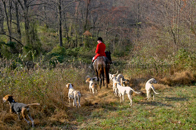 Cheshire Foxhounds Vintage - 2009 and Before