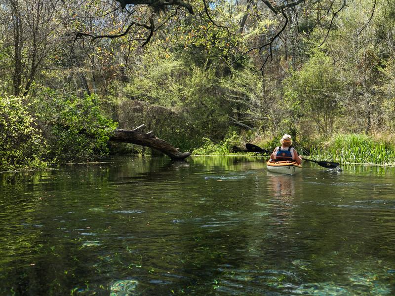 02-23-2019 Ichetucknee River kayak (71 of 78).jpg