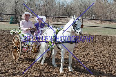 Colorado Driving Society March 31, 2013