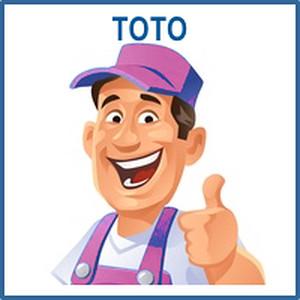 30190 Toto wedding build up teamleader