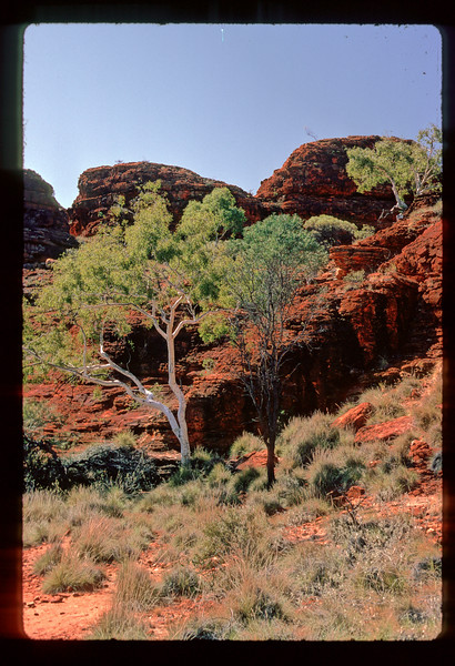 1984 Central Australia
