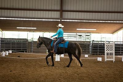 Horse 39