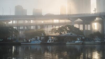 Amaneceres en el rio