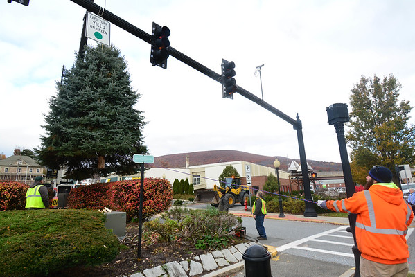 Christmas tree placed at North Adams City Hall - 110818