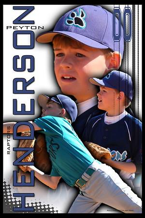 Baseball Posters 2010 Season