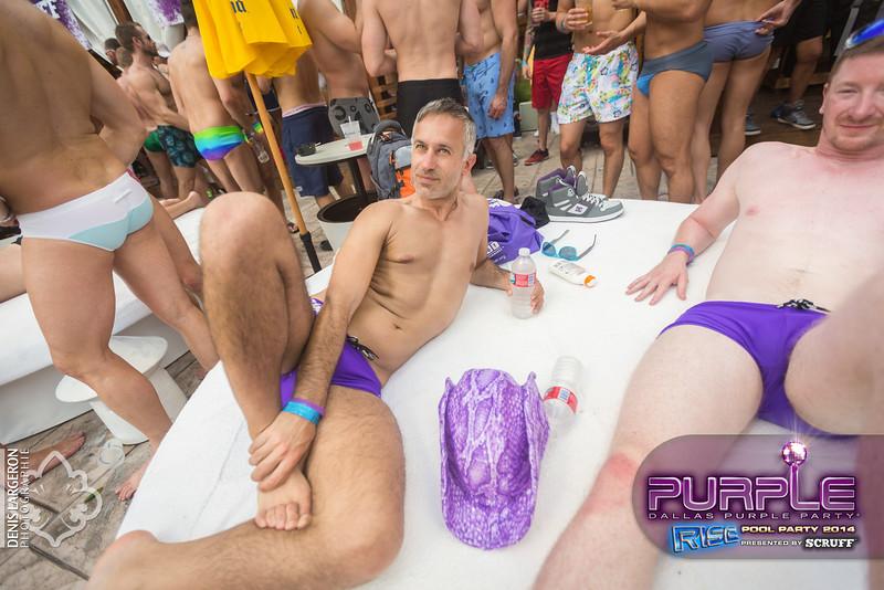2014-05-10_purple06_524-3255130299-O.jpg
