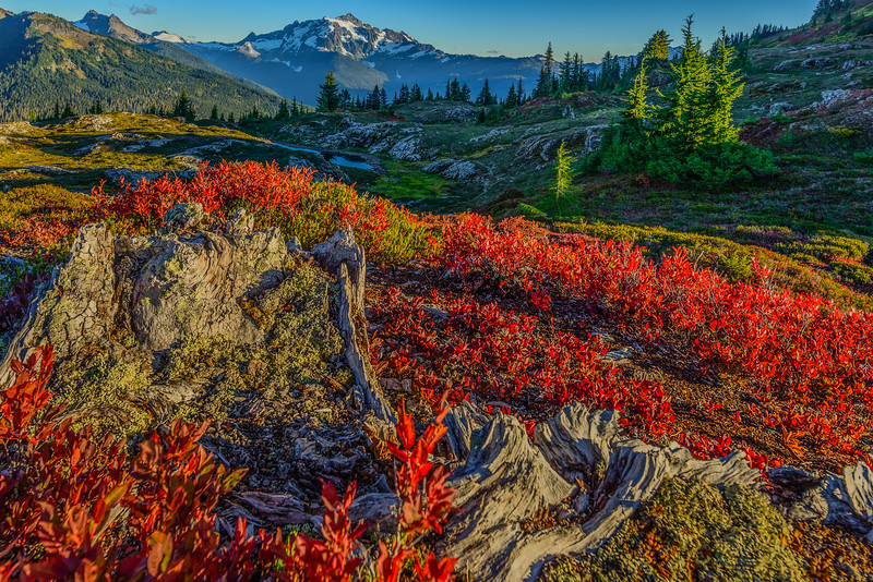 Yellow Aster Butte_9_17 (5 of 236)-Edit.jpg