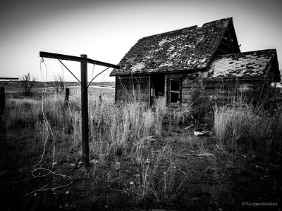 Abandoned and Forgotten